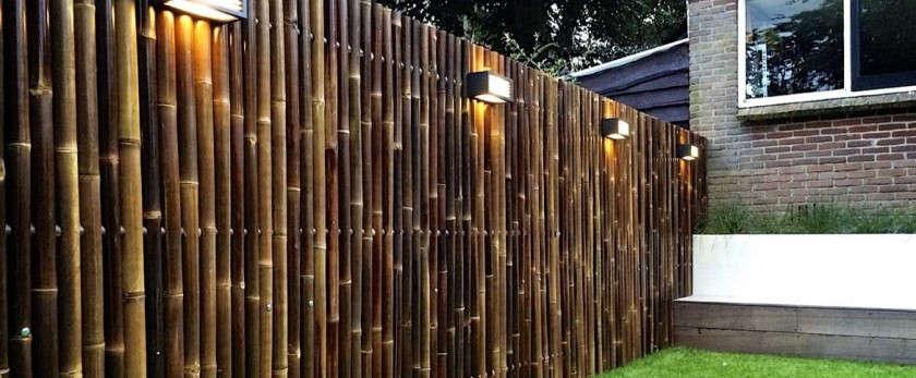 Забор из бамбука своими руками: фото примеров оформления