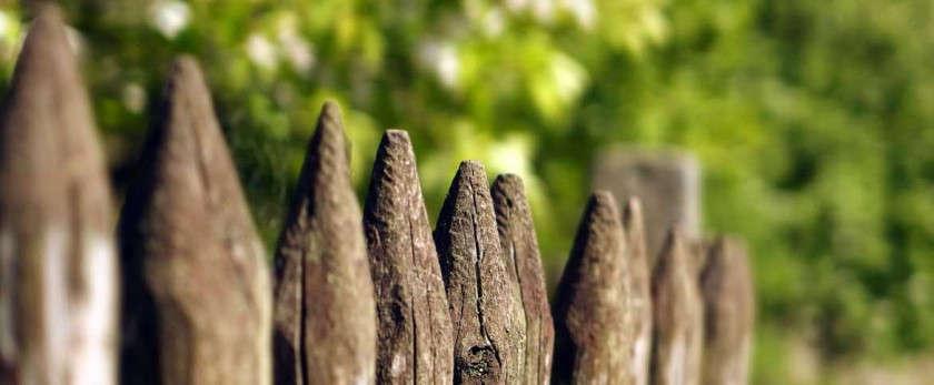Забор из частокола своими руками: особенности и разновидности