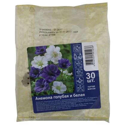 Купить Анемона цвет голубой/белый микс дешевле