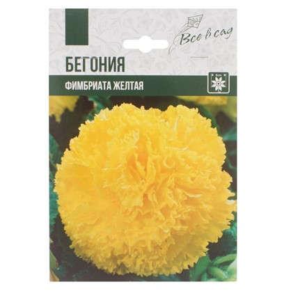 Бегония Фимбриата цвет жёлтый