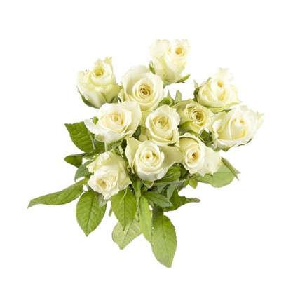 Купить Букет Роза 40 см 11 шт. дешевле