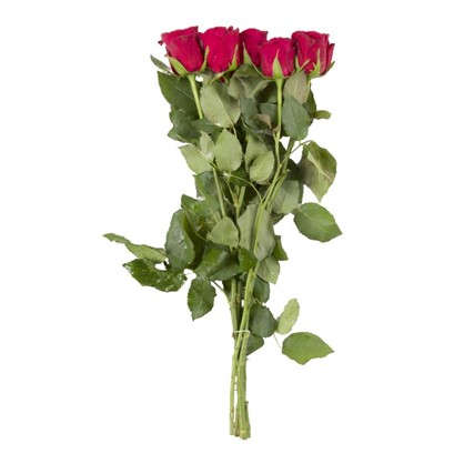 Букет Роза 40 см 5 шт.