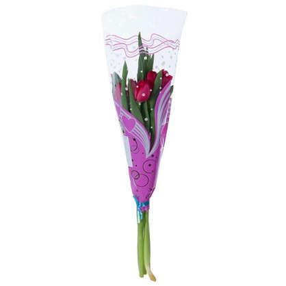 Купить Букет Тюльпаны 5 шт. дешевле