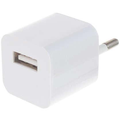 Купить Cетевое зарядное устройство ACR-101 1 А 1 USB дешевле