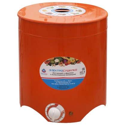 Электросушилка Электромаш для фруктов и овощей