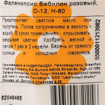 Купить Фаленопсис Бебилон розовый дешевле