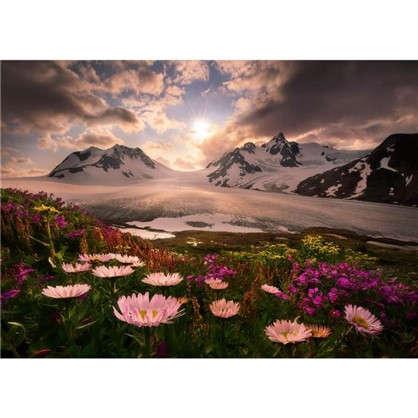Купить Фотообои бумажные Аляска 254х184 см дешевле