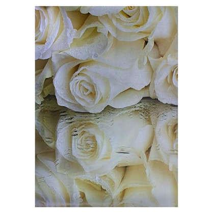 Фотообои бумажные Белые розы 368x254 см