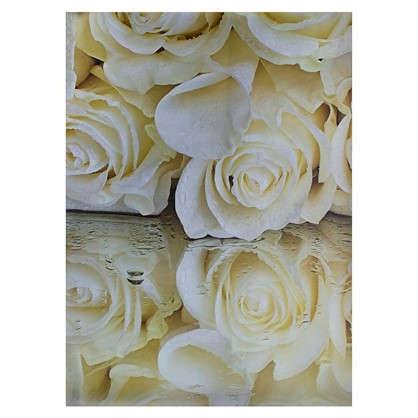 Купить Фотообои бумажные Белые розы 368x254 см дешевле