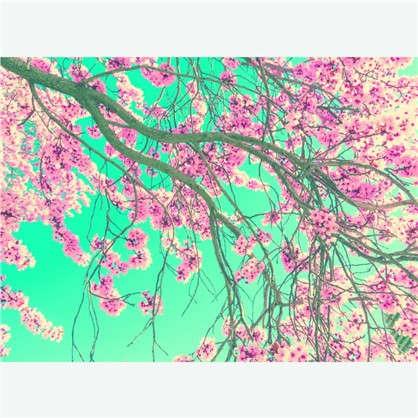 Фотообои флизелиновые Ханами 270х370 cм