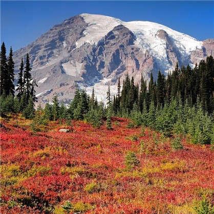 Фотообои флизелиновые Снежные горы 200х200 см