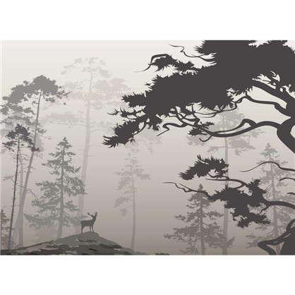 Фотообои флизелиновые Туманный лес 370х270 см