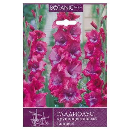 Купить Гладиолус крупноцветковый Люмьере дешевле