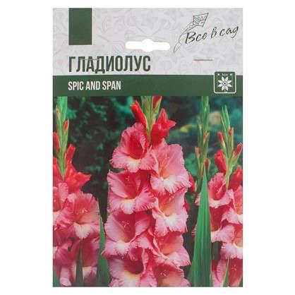 Гладиолус крупноцветковый Спик энд Спан