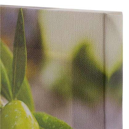 Купить Холст 20х20 см Зеленые оливки дешевле