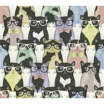 Холст 40х40 см Кошки и очки
