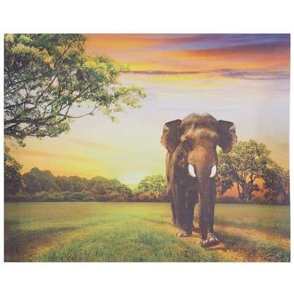 Купить Холст 50х40 см Слон дерево дешевле