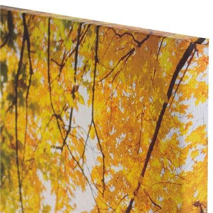 Купить Холст 70х50 см желтый лес дешевле