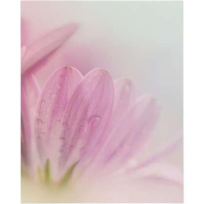 Купить Картина без рамы Розовый цветок 40х50 см дешевле