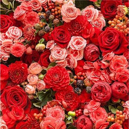 Купить Картина на холсте 40х40 см Алые розы дешевле
