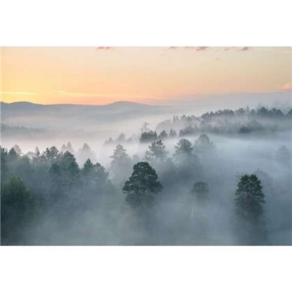 Картина на холсте 50х70 см Туман