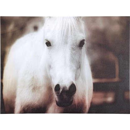 Картина на холсте Белая лошадь 30х40 см
