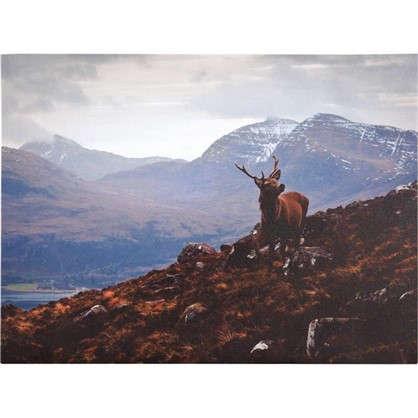 Картина на холсте Олень и гора 30х40 см