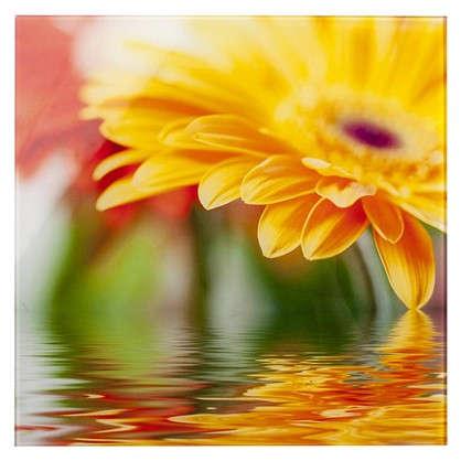Картина на стекле 30х30 см Flower 28702009