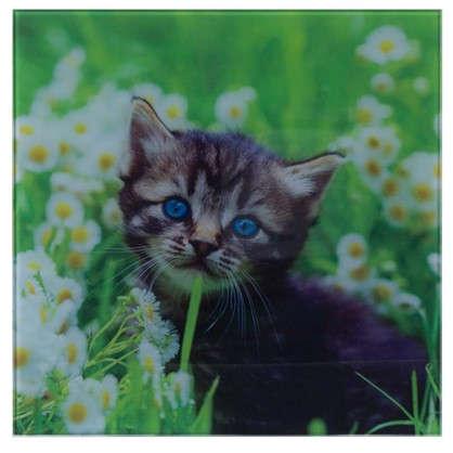 Картина на стекле 30х30 см Котенок в ромашке