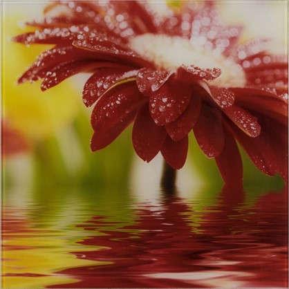 Картина на стекле 30х30 см Red flower 27737524
