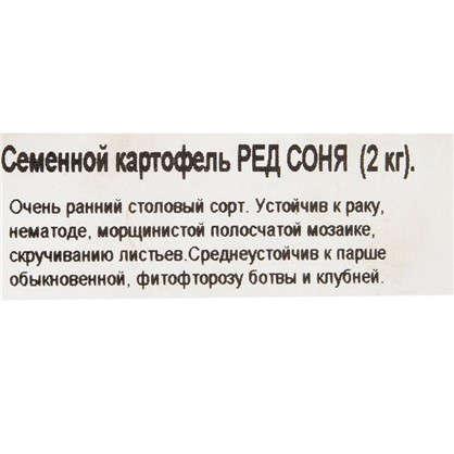 Картофель семенной Ред Соня 2 кг