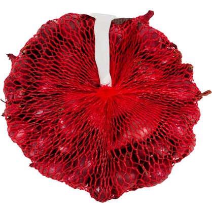 Лук-севок Ред Барон диаметр луковицы 14-21 мм