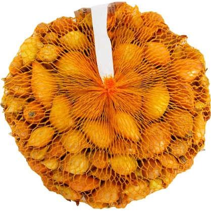 Лук-севок Шетана диаметр луковицы 14-21 мм