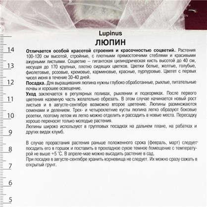 Люпин многолистный Ноублмейден 1 шт.