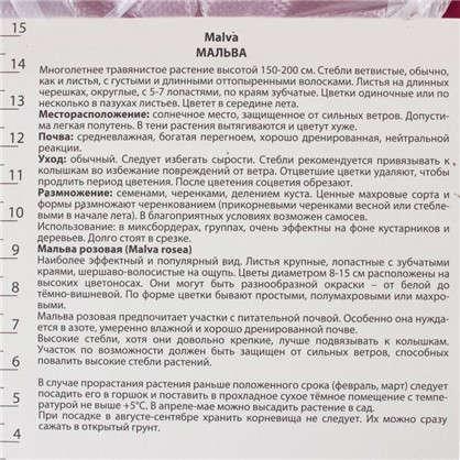 Мальва Нигра с капером цвет розовый