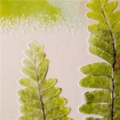 Обои виниловые 0.53х10 м папоротник цвет зеленый Ra 824803