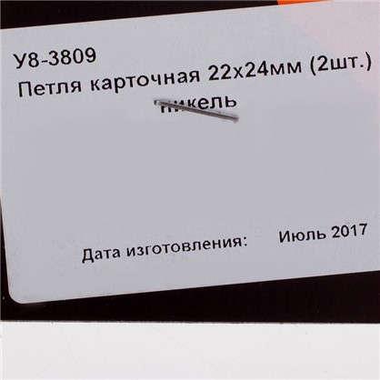 Петля карточная Левша универсальная 24х22 мм