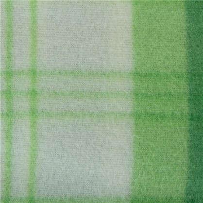 Купить Плед Basic 130х170 см флис цвет зеленый дешевле