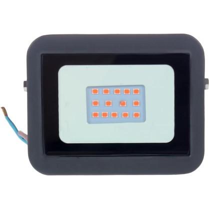 Прожектор светодиодный Volpe 10 Вт 240 Лм IP65 цвет красный