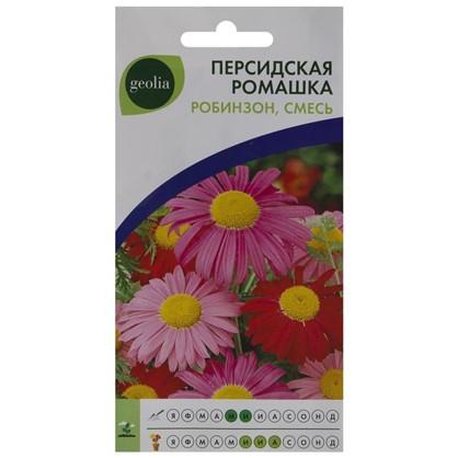 Ромашка персидская Geolia Робинзон смесь окрасок