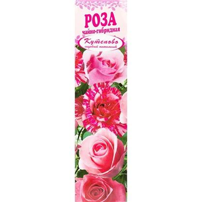 Роза чайно-гибридная Нимфа в коробке