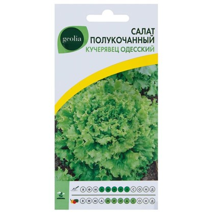 Купить Салат Geolia Кучерявец одесский дешевле