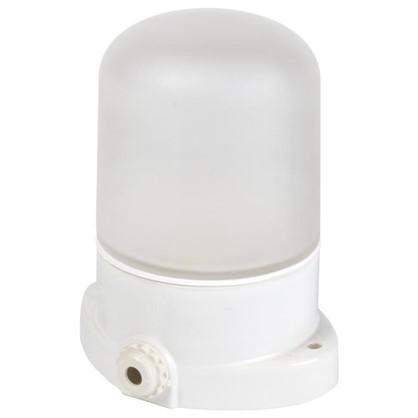 Светильник накладной для сауны TDM 1хE27х60 Вт IP54