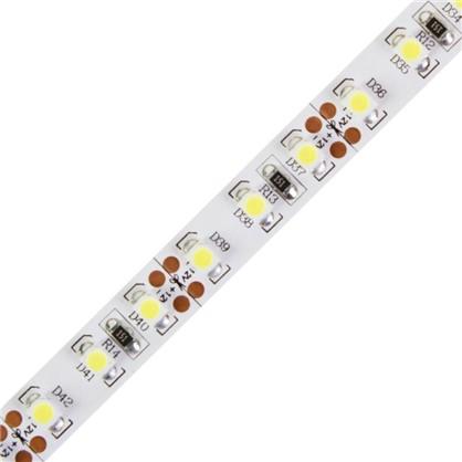 Светодиодная лента 9.6Вт/120LED/м свет холодный белый IP23