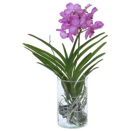 Ванда микс в вазе