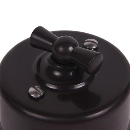 Выключатель на два положения цвет коричневый