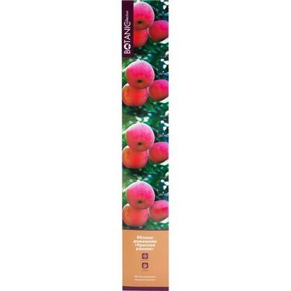 Купить Яблоня Красное раннее в тубе дешевле