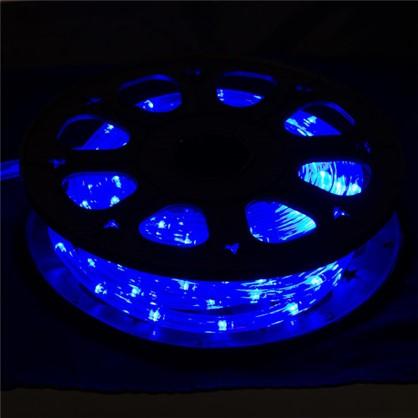 Гирлянда для улицы дюралайт синий 8 м 24 лампы цена